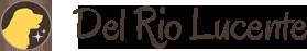 Allevamento golden retriever e cavalier king Del Rio Lucente